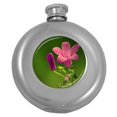 Campanula Close Up Hip Flask (round)