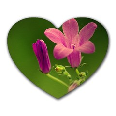 Campanula Close Up Mouse Pad (heart) by Siebenhuehner