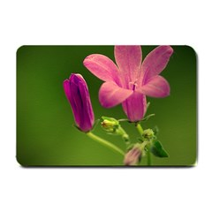 Campanula Close Up Small Door Mat by Siebenhuehner