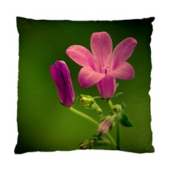 Campanula Close Up Cushion Case (two Sided)  by Siebenhuehner