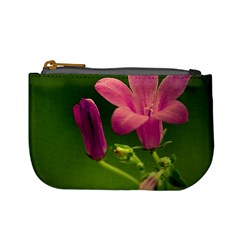 Campanula Close Up Coin Change Purse by Siebenhuehner