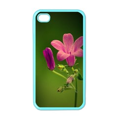 Campanula Close Up Apple Iphone 4 Case (color) by Siebenhuehner