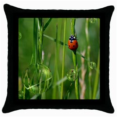 Ladybird Black Throw Pillow Case by Siebenhuehner