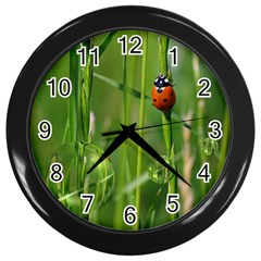 Ladybird Wall Clock (black) by Siebenhuehner