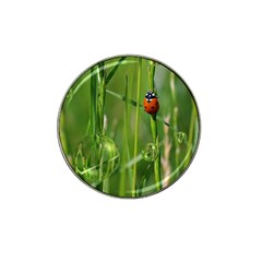 Ladybird Golf Ball Marker (for Hat Clip) by Siebenhuehner