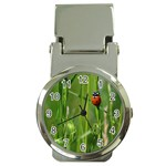 Ladybird Money Clip with Watch Front