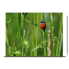 Ladybird Large Door Mat by Siebenhuehner