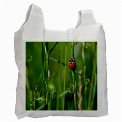 Ladybird Recycle Bag (two Sides) by Siebenhuehner
