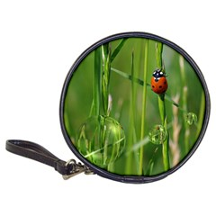 Ladybird Cd Wallet by Siebenhuehner