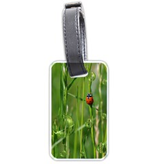 Ladybird Luggage Tag (one Side) by Siebenhuehner