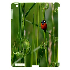 Ladybird Apple Ipad 3/4 Hardshell Case (compatible With Smart Cover) by Siebenhuehner