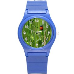 Ladybird Plastic Sport Watch (small) by Siebenhuehner