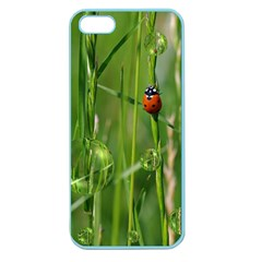 Ladybird Apple Seamless Iphone 5 Case (color) by Siebenhuehner