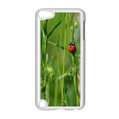 Ladybird Apple Ipod Touch 5 Case (white) by Siebenhuehner