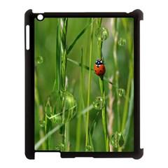 Ladybird Apple Ipad 3/4 Case (black) by Siebenhuehner
