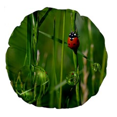Ladybird 18  Premium Round Cushion  by Siebenhuehner