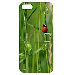Ladybird Apple Iphone 5 Hardshell Case With Stand by Siebenhuehner