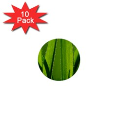 Grass 1  Mini Button (10 Pack) by Siebenhuehner