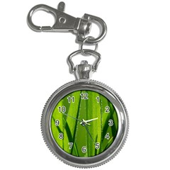 Grass Key Chain & Watch by Siebenhuehner
