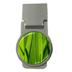 Grass Money Clip (round) by Siebenhuehner