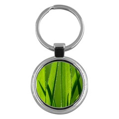 Grass Key Chain (round) by Siebenhuehner