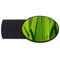 Grass 1GB USB Flash Drive (Oval)