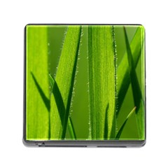 Grass Memory Card Reader With Storage (square) by Siebenhuehner