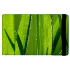 Grass Apple Ipad 2 Flip Case by Siebenhuehner