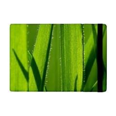 Grass Apple Ipad Mini Flip Case by Siebenhuehner