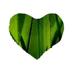 Grass 16  Premium Heart Shape Cushion  by Siebenhuehner