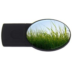 Grass 2GB USB Flash Drive (Oval) by Siebenhuehner