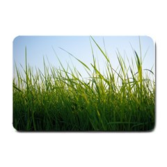 Grass Small Door Mat by Siebenhuehner