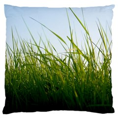 Grass Large Cushion Case (single Sided)  by Siebenhuehner
