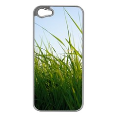 Grass Apple Iphone 5 Case (silver) by Siebenhuehner