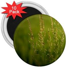 Grass 3  Button Magnet (10 Pack) by Siebenhuehner