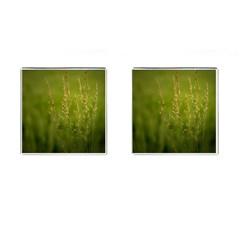 Grass Cufflinks (square) by Siebenhuehner