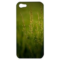 Grass Apple Iphone 5 Hardshell Case by Siebenhuehner