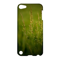 Grass Apple Ipod Touch 5 Hardshell Case by Siebenhuehner