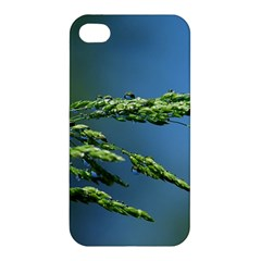 Waterdrops Apple Iphone 4/4s Hardshell Case by Siebenhuehner
