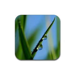 Waterdrops Drink Coasters 4 Pack (square) by Siebenhuehner