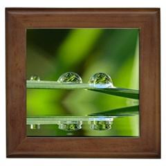 Waterdrops Framed Ceramic Tile by Siebenhuehner