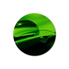 Green Drop Drink Coaster (round) by Siebenhuehner