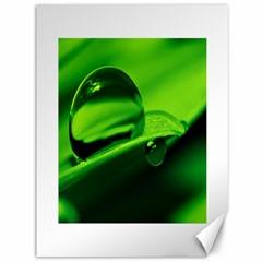 Green Drop Canvas 36  X 48  (unframed)