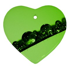 Green Drops Heart Ornament by Siebenhuehner
