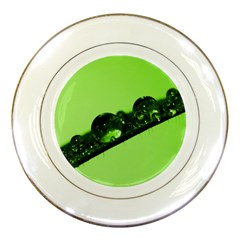 Green Drops Porcelain Display Plate