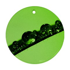 Green Drops Round Ornament (two Sides) by Siebenhuehner