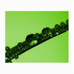 Green Drops Glasses Cloth (small, Two Sided) by Siebenhuehner