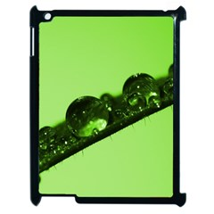 Green Drops Apple Ipad 2 Case (black) by Siebenhuehner