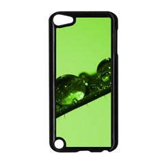 Green Drops Apple Ipod Touch 5 Case (black) by Siebenhuehner