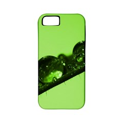 Green Drops Apple Iphone 5 Classic Hardshell Case (pc+silicone) by Siebenhuehner